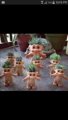 Trolls with succulent hair