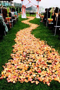 Gorgeous rose petal aisle