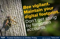 Bee vigilant.  Maintain your digital footprint and don't get stung by forgotten accounts.  #TGIF - Trusted Guidance on #InfoSec Friday!  #socialmedia