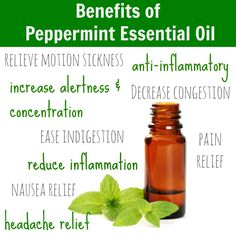 Peppermint oil has many benefits and works as an pain relief, anti-inflammatory, etc. Know more information about the given oil. http://www.blogvitamins.com/essential-aromatherapy/peppermint-oil-coupons