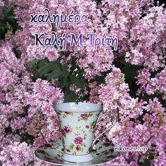 Greek Easter, Plants, Period, Cookies, Quotes, Crack Crackers, Cookie Recipes, Planters, Biscotti