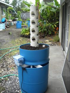 Vertical Aquaponics has the advantage of allowing a lot of growth on a small amount of land.  But make sure you can access all parts of the system for maintenance.