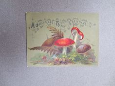 ANTIQUE CHRISTMAS Card Brightly Coloured Fungi Toadstools Ferns Chromo Victorian | eBay