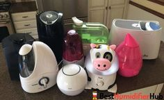Humidifier What do you think of the colour? Humidifier 19 Insanely Clever Gifts You'll Want To Keep For Yourself Can I Add Oil Scents to My Humidifier Best Best Room Humidifier, Small Humidifier, Steam Humidifier, Humidifier Filters, Warm Mist Humidifier, Household Cleaning Tips, Cleaning Hacks, Hot Steam, Mists