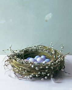 Cesto nido con ovetti - FOTO