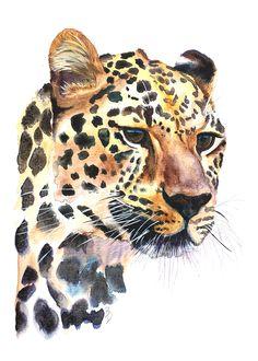 Leopard Watercolour Painting Print by Bonnie Dixson, Art, Animal Art, Home Decor Art Print by bonniedixson Watercolor Pencil Art, Watercolor Paintings Of Animals, Animal Paintings, Watercolour Painting, Big Cats Art, Cat Art, Tier Fotos, Wildlife Art, Architecture Art