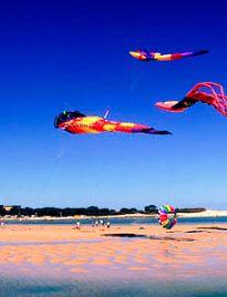 BLUE BAY CAMPING & CARAVAN TOURIST PARK  THE ENTRANCE, NSW  Central Coast