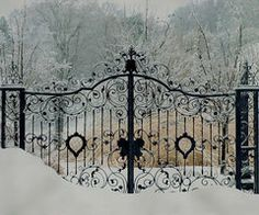 i love gates, you might even turn this into a fence for the front of your home , half on either side of your home, I love this idea, with a view to the side and rear of the home. think that would look just wonderful!! and beautiful landscaping on the side of the house.
