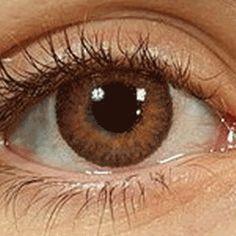 lens servilens lentes de contacto
