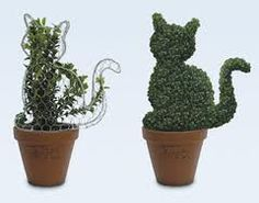topiary cat - Google Search