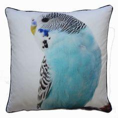 Large Budgie Cushion