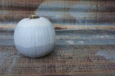 Ombre Pumpkin