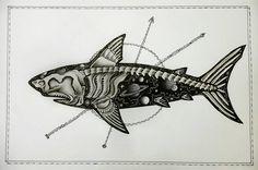 Skeleton shark by CosmicDarK on DeviantArt