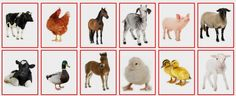 (2015-04) Hvem er hvem (dyr #3)? Farm Animal Crafts, Farm Animals, A5, Montessori, Preschool, Printables, Speech Language Therapy, Animales, Pictures