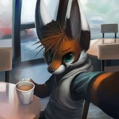Brightspark's 25yr old brother, Coffee the fox.