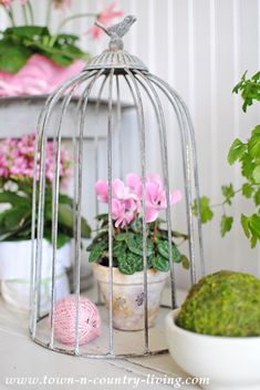 A collection of 12 spring decorating ideas is sure to provide the inspiration you need to add springtime freshness to every corner of your home!