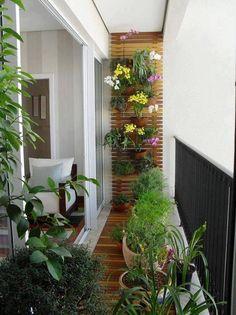 Bild könnte enthalten: Pflanze, Blume, im Freien und Natur