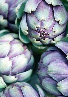 Artichoks; artichots, que de belles couleurs :)