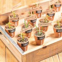 Use mini terracotta pots to create your wedding seating arrangement that double as your guests' wedding favors #rusticwedding