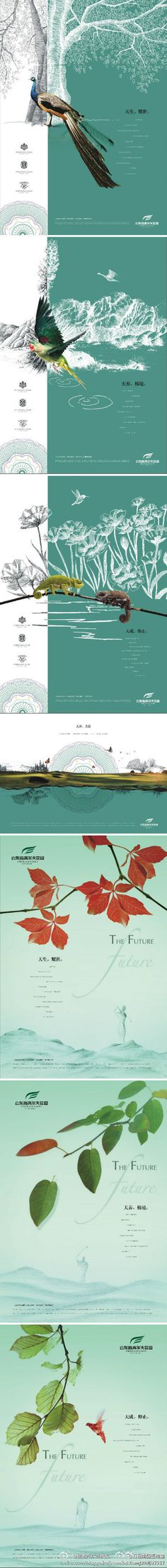 Chines layout features exquisite bird and landscape illustrations Print Layout, Layout Design, Graphic Design Posters, Typography Design, Book Design, Design Art, Print Design, Photoshop, Brochure Design