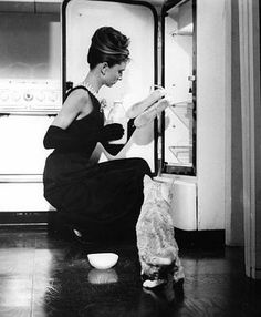 """""""I don't think I've ever drunk champagne before breakfast before. With breakfast on several occasions, but never before, before.""""-Breakfast at Tiffany's"""