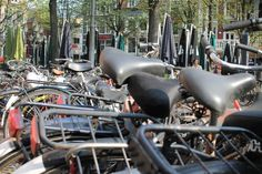 Just a typical bike rack in amsterdam