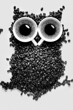 Too much coffee owl