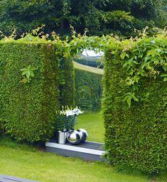Primrose mirror in a garden hedge Garden Landscape Design, Small Garden Design, Small Back Garden Ideas, Sloped Garden, Raised Garden Beds, Garden Soil, Gardening, Ideas Para Decorar Jardines, Garden Dividers