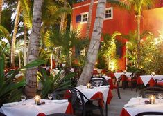 A photograph of romantic dining under the palms at Coco Bistro, Providenciales (Provo), Turks and Caicos Islands.