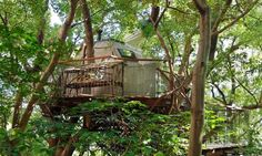 Living Trees Bird's Nest Atami By Hiroshi Nakamura