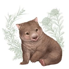 A series of 6 cute and cuddly Australian animals illustrated by Elise Martinson that have been licensed for greeting cards, fabric and homewares. Friends Illustration, Illustration Art, Animal Illustrations, Illustrations Posters, Baby Wombat, Baby Animals, Cute Animals, Anime Animals, Koala Tattoo