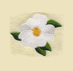 Cherokee Rose Tea Towel Georgia State by charlenesembroidery Wedding Embroidery, Rose Embroidery, Machine Embroidery Designs, Embroidery Patterns, Cherokee Rose, Embroidered Towels, Native Beadwork, Rose Tea, Rose Design