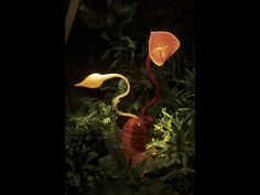 Chihuly, Lava Red Ikebana, 2001