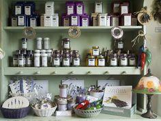 Lavender Farm & Store (Sequim, WA) Photos Jardin du Soleil