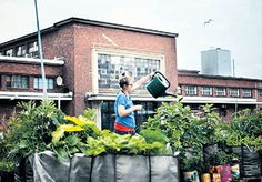 Teurastamo & Kellohalli Helsinki, Finland, Restaurants, Tasty, Events, Urban, Cooking, Places, Food
