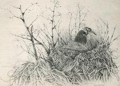 Brian Gallagher explores the detailed subject matter to be found in any landscape Vanishing Point, Pencil Drawings, Landscape Paintings, Medium, Art, Art Background, Kunst, Gcse Art, Pencil Art