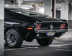 black cars muscle cars vehicles Ford Mustang bushes Ford Mustang ...