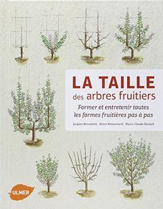 Traitements d 39 hiver pour les arbres fruitiers feminin bio home pinterest - Comment se debarrasser des fourmis sur les arbres fruitiers ...