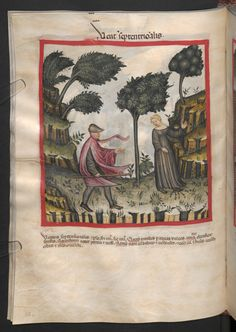 Folio 58v (page 120). Tacuinum sanitatis, Codex Vindobonensis, series nova 2644. Northern Italy, probably Verona, 1380-1399.