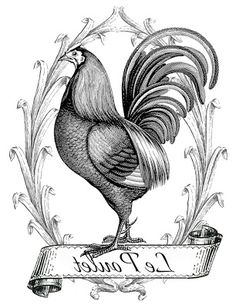 Printable Image Transfer - French Chicken - The Graphics Fairy