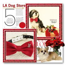 """LA Dog Store"" by ladogstores ❤ liked on Polyvore featuring LSA International"