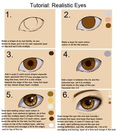 Just a picture that shows you how to draw the eye so it looks more real;)