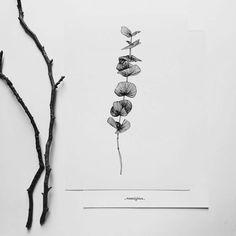 Dessin réalisé à la main. Le dessin représente une plante ou une partie de plante. Ces Illustrations sont réalisées à la main, au stylo avec amour et passion. Elles sont souvent le reflet de mon observation et surtout de mon intérêt pour la nature qui est si extraordinaire.  Elles sont ensuite imprimées en quantité limitée, sur papier rigide et mate que jai choisi pour son rendu visuel brut, puis numérotées jusquau dernier exemplaire. Par exemple, la cinquième affiche dune série limitée de…