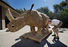 Wife Tells Husband to Take Up a Hobby, He Builds a Giant Wine Cork Rhinoceros  Two California couples, Jim and Mary Lambert of Carmichael, and Bob and Di Nelson of Fair Oaks, have spent the last three years making a life-size rhinoceros sculpture out of plywood, foam and 12,000 wine corks.