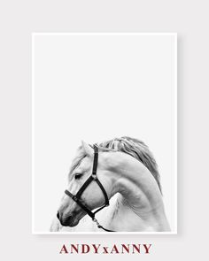 ►SAVE 40% WHEN YOU ORDER TWO (2) OR MORE PRINTS. USE CODE GIFT40◄  Horse Prints Horse Printable art White Horse Print Nursery Art Nursery Print White Horse Nursery Printable art Horse Art Instant Download Printable Art Horse Photography Horse Photo Horse Decor Horse Black White  A modern instant digital download, printable in an array of sizes. ____instant download___  This listing includes four(4) JPG file instantly printable downloadable digital files (without framed background). Your…