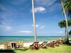 Hotel Deals, Outdoor Pool, Car Parking, Hotel Offers, Thailand, Sun, Outdoor Swimming Pool