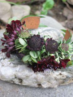 succulent jewelry, floral bracelet, mother of bride flowers, Vermont Wedding flowers via floralartvt.com