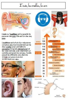 hearing and sound poster Language Study, French Language Learning, Language Lessons, Teaching Geography, Teaching Activities, Teaching Science, French Body Parts, Teaching French Immersion, French Education