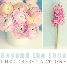 Sarah Gardner {ART BLOG}: QUICK SHOP {Beyond the Lens Actions & Textures}