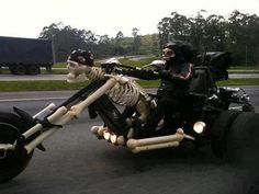 Skeleton hike